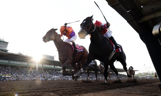 Beholder выиграла скачку Breeders Cup Longines Distaff.